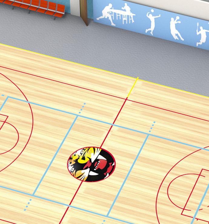Main sports area